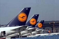 Nhiên liệu sinh học chiếm ưu thế trong hàng không