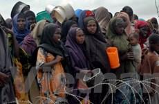 Bán đất nông nghiệp khiến châu Phi rơi vào nạn đói