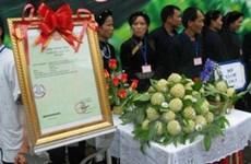 Nhãn hiệu chứng nhận cho sản phẩm na Chi Lăng