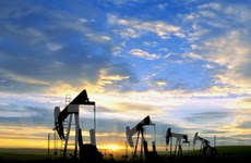 Báo cáo dự trữ dầu thô Mỹ đẩy giá dầu châu Á tăng
