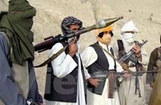 Taliban ở Afghanistan không chấp thuận ngừng bắn