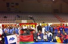 Hàng trăm vận động viên quốc tế thi Vovinam ở Italy