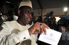 Cử tri Senegal bắt đầu bầu cử tổng thống vòng hai