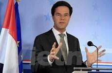 Chính phủ Hà Lan đứng trước nguy cơ bị sụp đổ