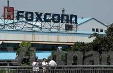 Cổ phiếu Foxconn International sụt giảm tới 3,5%