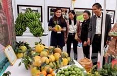 Hà Nội: Hội hoa-chợ Tết tôn vinh nông sản, làng nghề