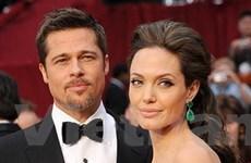 Angelina Jolie-Brad Pitt ra mắt loại rượu vang riêng