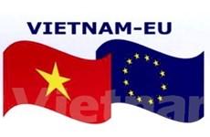 Thế mạnh lớn hơn cho Việt Nam trên thị trường EU