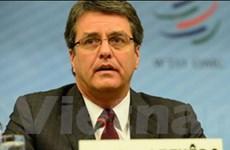 Roberto Azevedo - Tổng giám đốc tương lai của WTO?