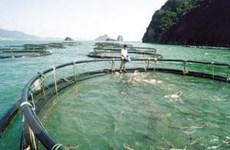 Đánh thức tiềm năng du lịch Vân Đồn-Quảng Ninh