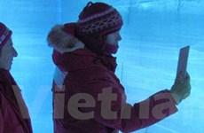 Lại phát hiện rệp băng trong các lớp băng Nam Cực