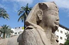 Phát hiện tượng nhân sư Ai Cập cổ đại tại Israel