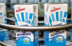 Chính phủ New Zealand điều tra bê bối sữa Fonterra