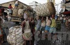 Ấn Độ thông qua dự luật lương thực cho người nghèo