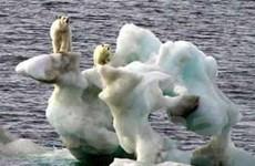 Nhiệt độ Trái Đất tăng