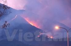 Cháy 5 ha rừng tái sinh gần Khu di tích Đền Hùng
