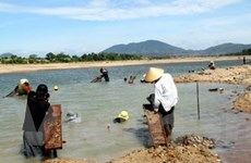 Đắk Nông: Nhiều đối tượng khai thác vàng trái phép