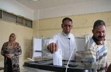 Ai Cập: Các đảng phái yêu cầu xây nhà nước dân sự