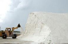 Triển vọng từ dự án sản xuất muối có trải bạt PVC