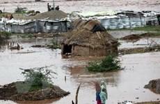 75 người thiệt mạng do mưa lũ ở Ấn Độ, Pakistan