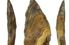 Con người dùng mũi giáo đá cách đây 500.000 năm