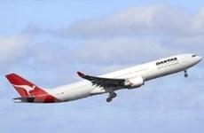 Lợi nhuận của hãng hàng không Qantas tăng mạnh