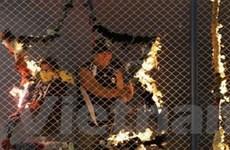 Cổ động viên Corinthians ném pháo gây chết người