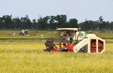 Việt Nam hỗ trợ CH Tchad phát triển nông nghiệp