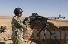"""Mỹ kêu gọi ủng hộ chấm dứt """"mất cân bằng"""" ở Syria"""