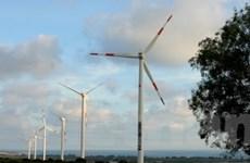 Khuyến khích các doanh nghiệp đầu tư vào điện gió