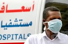 WHO: Thêm 6 trường hợp nhiễm virus MERS-CoV