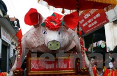 Tục lệ rước lợn khao quân độc đáo ở La Phù