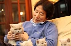 Người chăm từng miếng ăn giấc ngủ cho chó, mèo