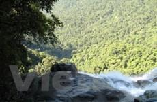 Sẽ có cáp treo lên vườn quốc gia Bạch Mã