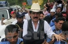 """Tổng thống bị phế truất Zelaya """"đặt chân"""" về nước"""