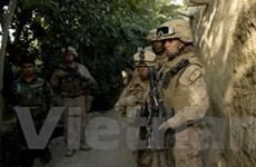 Taliban đe dọa phá bầu cử ở Afghanistan
