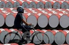Kinh tế thế giới sẽ nguy hiểm nếu giá dầu tăng tiếp