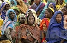 Sudan ký thỏa thuận khung với phiến quân Darfur