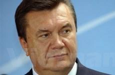 Ukraine tìm nguồn nhiên liệu thay thế khí đốt giá cao