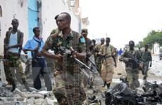 Gia hạn sứ mệnh Nhóm giám sát Somalia và Eritrea