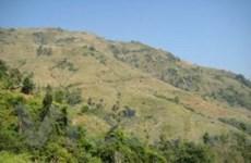Rừng tự nhiên Sơn La bị thu hẹp nghiêm trọng