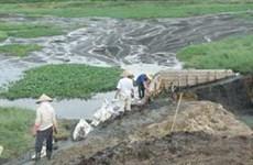 Phạt 106 triệu đồng vì gây ô nhiễm sông Thị Tính