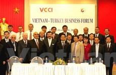 Doanh nghiệp VN-Thổ Nhĩ Kỳ tìm cơ hội hợp tác