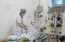 Thái Nguyên: Một người tử vong do bị ong đốt