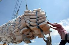 Nên có giấy chứng nhận kinh doanh xuất khẩu gạo