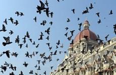 Các hoạt động nhân dịp 1 năm vụ khủng bố Mumbai