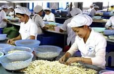 Tìm giải pháp bảo vệ hàng xuất khẩu Việt Nam