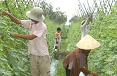 Hỗ trợ nghiên cứu công nghệ cao cho nông nghiệp