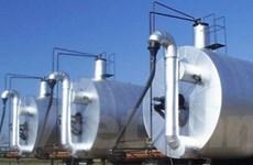Công trình sản xuất điện biogas hiện đại nhất