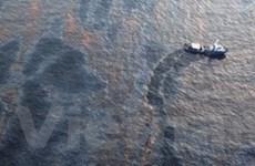 Ngư dân Việt với nỗi lo về thảm họa dầu loang